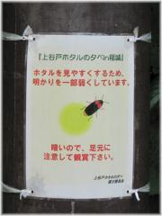 120610G 015街灯A