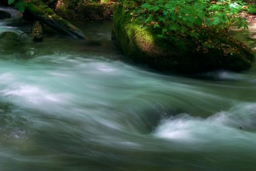 20120922 奥入瀬渓流2