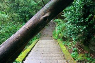 20121020 日本寺山道1
