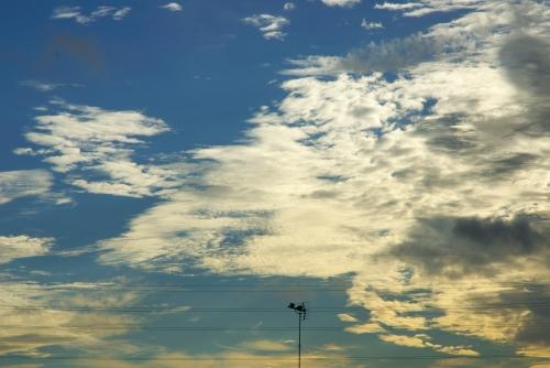 20121027 このきれいな空ほどに