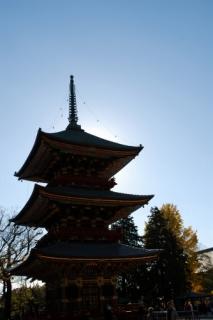 20121222 年賀写真-1