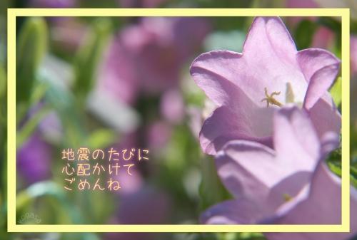 20120509 お母さん.jpg
