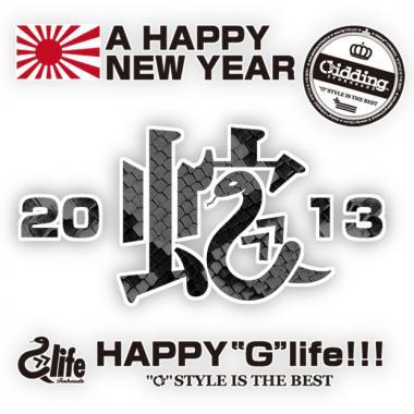 2013_HEBI.jpg