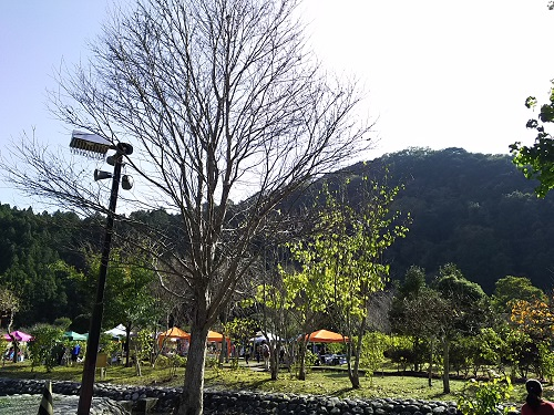 morimachi1.jpg