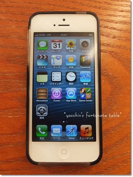 *iPhone5*