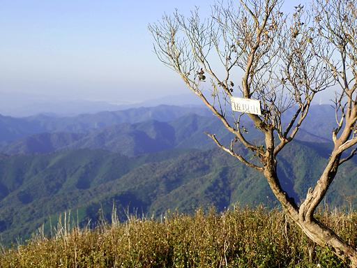 PA201002s.jpg