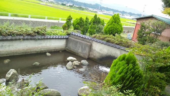 20120803-004.jpg