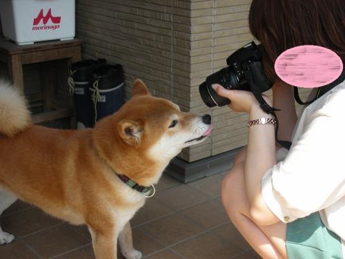 姉やんカメラ