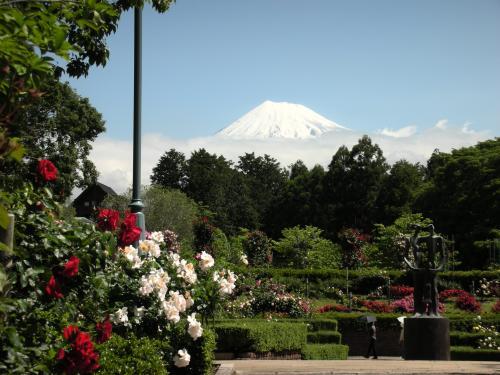 公園の富士2