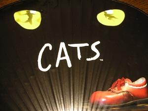 CATS YOKOHAMA
