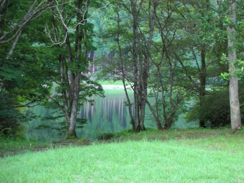 田貫湖11