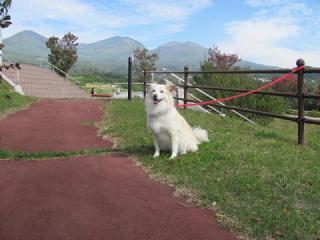 浅間山とせんべい_3708