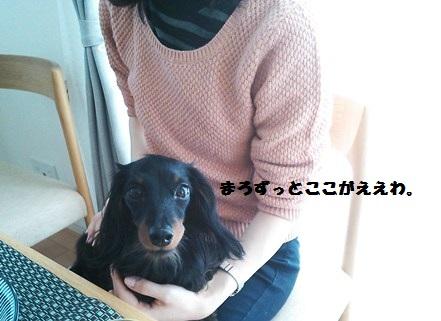 49_fukumaro6_130412.jpg