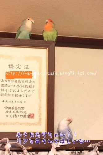りあ(悲)n