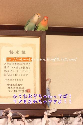 りあ(悲)2n