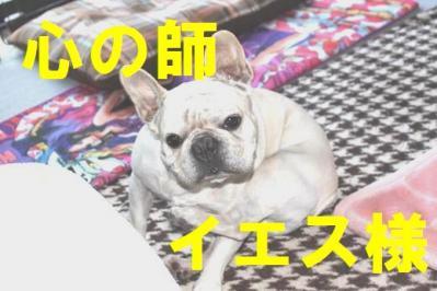 卍固めqws