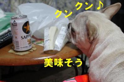 ビールにサンドjnq