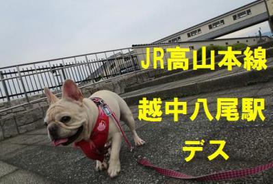 八尾駅vfb