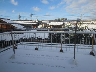 初雪ahs