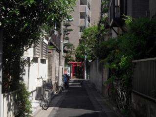 2012_0519_091055AA.jpg
