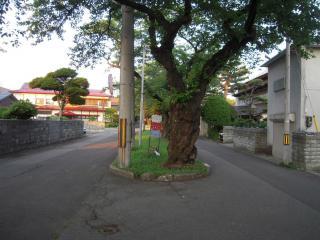 2012_0627_182845AA.jpg