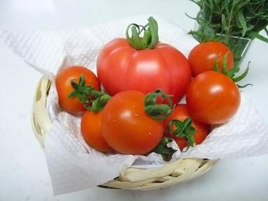 7-19トマト