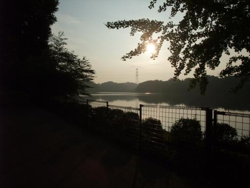 H24.7.29上池朝日
