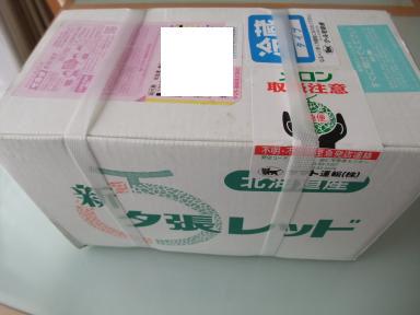 H24.8.9メロン箱