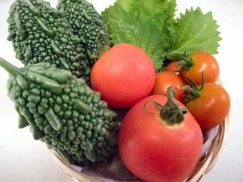 8-16野菜