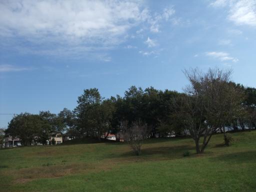 10.24葉っぱ公園