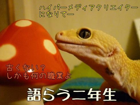 2-0もんちゃん 082