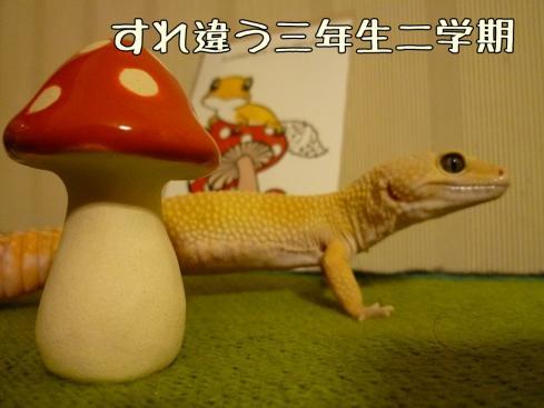 3-2もんちゃん 092