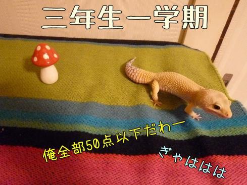 3-0もんちゃん 073