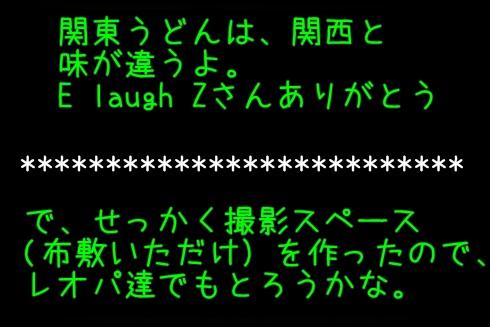 2_20120902033210.jpg