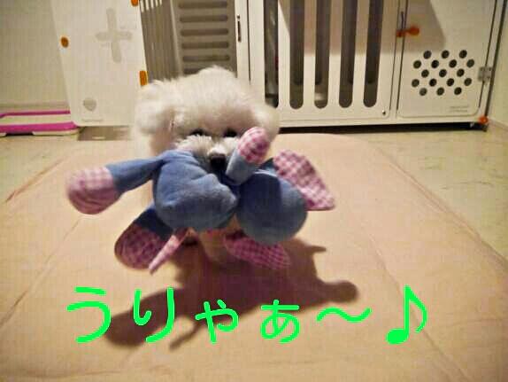 CYMERA_20140205_094040.jpg