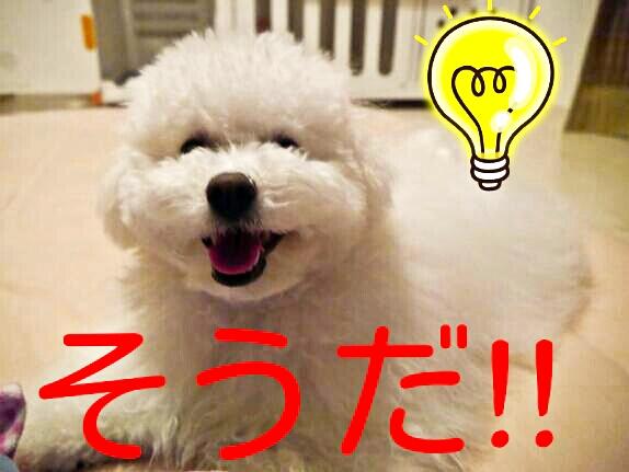 CYMERA_20140205_094124.jpg