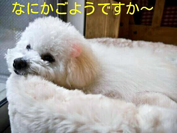 CYMERA_20140205_095032.jpg