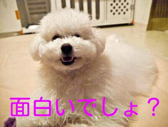 CYMERA_20140205_102655.jpg