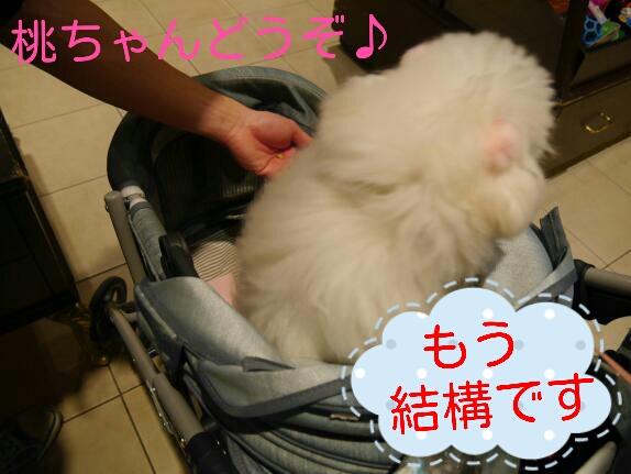 CYMERA_20140207_153238.jpg