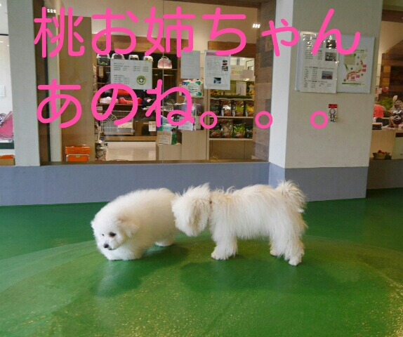 CYMERA_20140213_233658.jpg