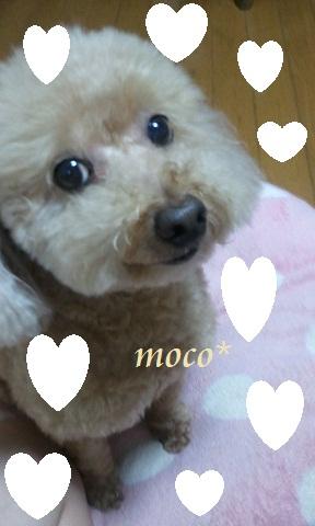 2012-09-08 moco