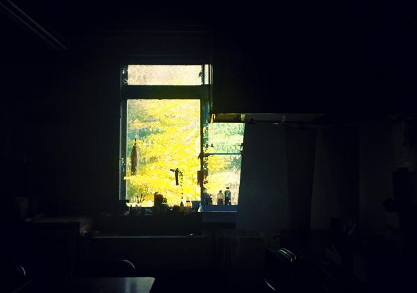 版画研究室から秋を切り取る