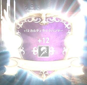 2012_11_28_0011.jpg