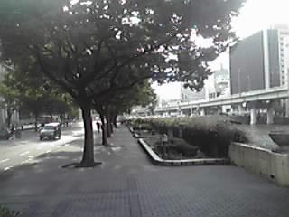 12-08-27_028.jpg