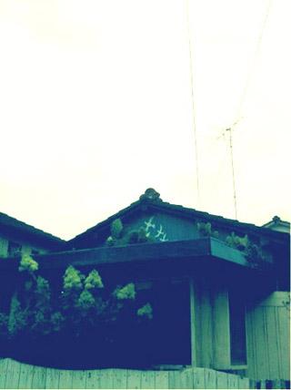 ●屋根にサボテン
