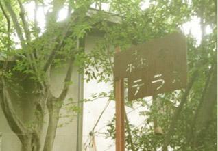 森のテラス看板