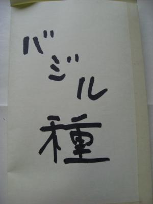 IMG_2491_縮小