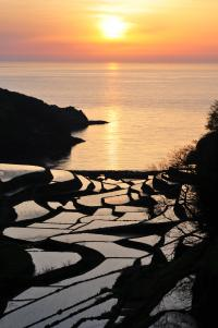 夕日の棚田