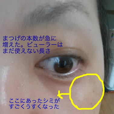 20130419まつげ