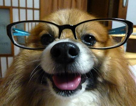勉強は苦手そうだなぁ(笑)。